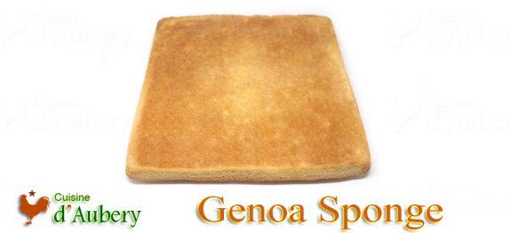 Stéphane Tréand's Genoa Sponge