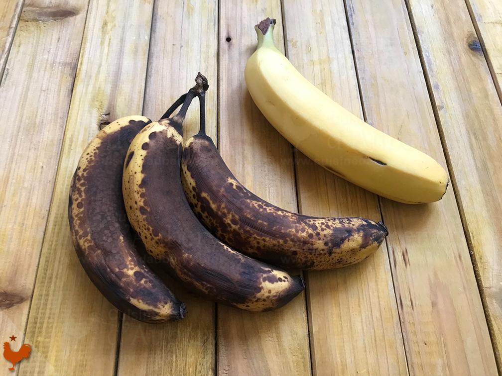Le Cake Banane Noix Sirop d'Erable