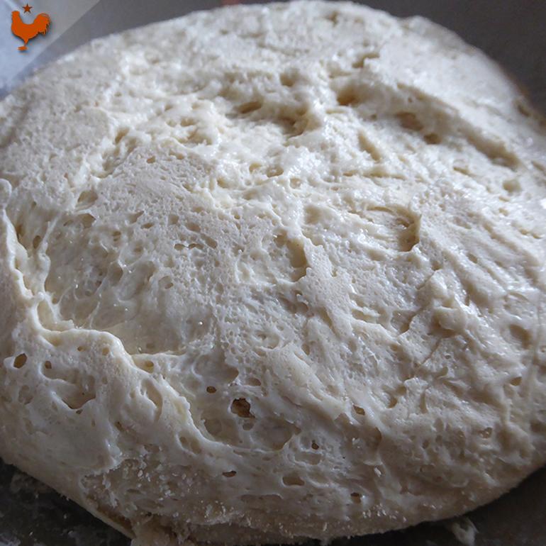 """Le Levain Pâteux Rapide (""""pâte fermentée sans sel"""")"""