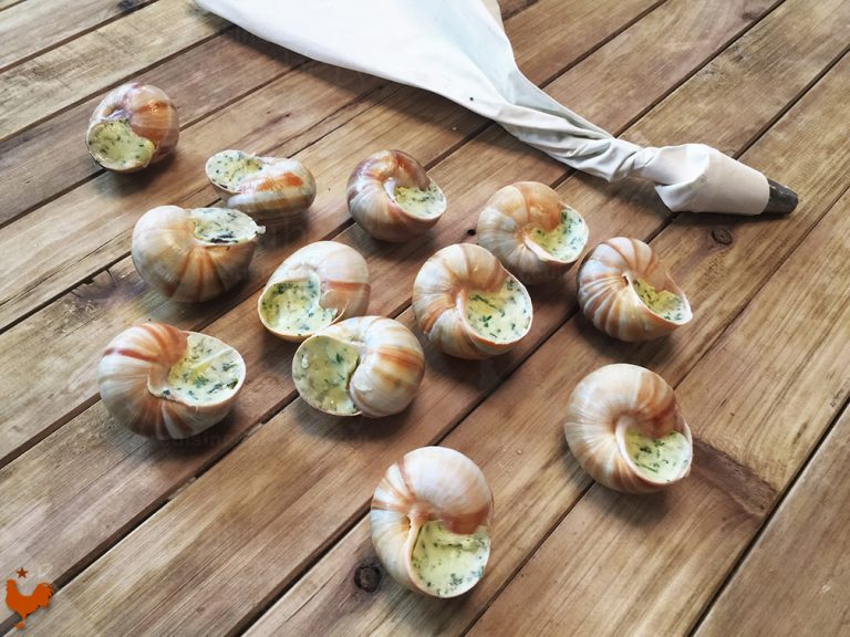 French Burgundy Escargots